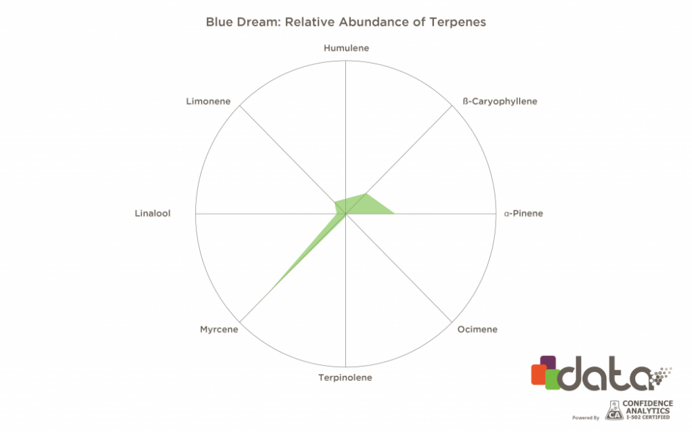 Blue-Dream-1024x640.png