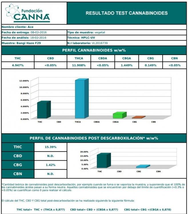 BHF29cannabinoides.jpg