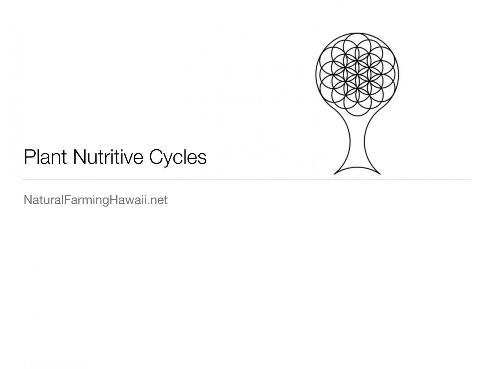 nutritive-cycle-01.jpg