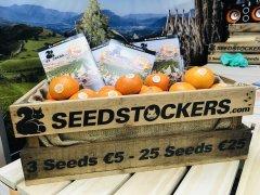 Seedstockers Stanowisko Spannabis