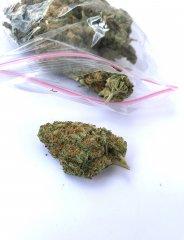 Marihuana CBD top