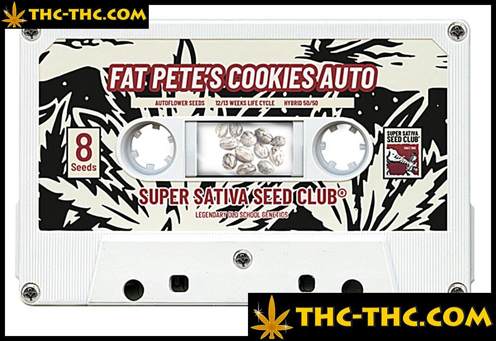 fat-petes-cookies-automatic-nasiona-thc.jpg.b0c5899782033e1167937e0cd392141e.jpg