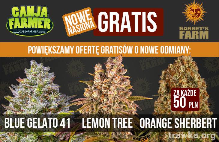Nowe Gratisy Brneys farm2.jpg